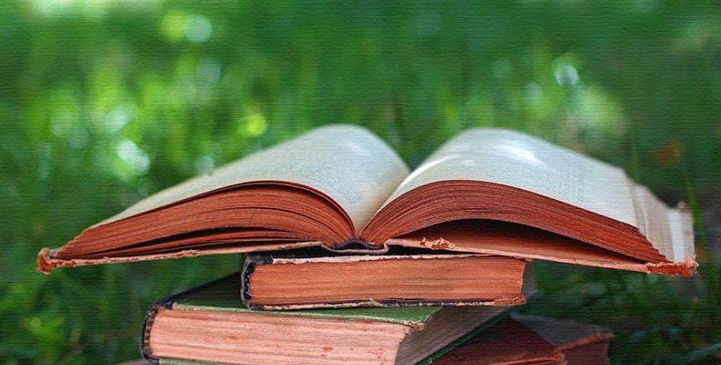 Рейтинг из ТОП 5 лучших популярных книг 2019—2020 года